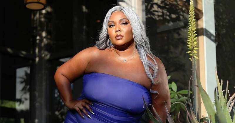 Lizzo Stage Diving