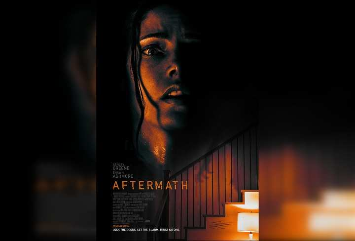 Download Aftermath